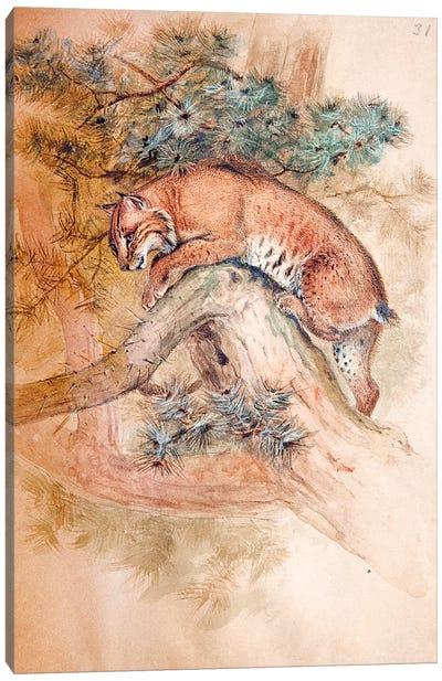 Norwegian Lynx, 1851-69  Canvas Art Print