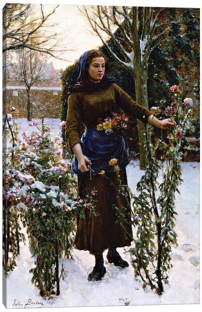 Last Flowers, 1890  Canvas Art Print