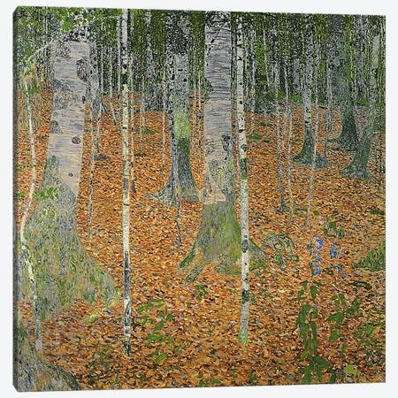 The Birch Wood, 1903 Canvas Print #BMN1088} by Gustav Klimt Canvas Wall Art