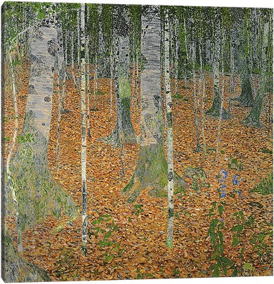 The Birch Wood, 1903 by Gustav Klimt Canvas Art Print
