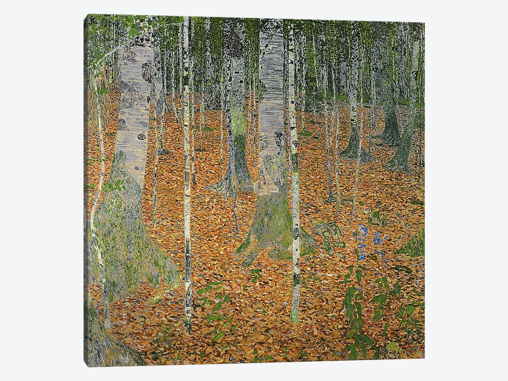 The Birch Wood, 1903 by Gustav Klimt 1-piece Art Print