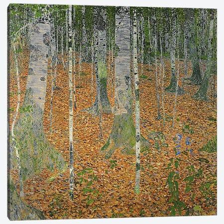 The Birch Wood, 1903 Canvas Print #BMN1088} by Gustav Klimt Canvas Wall Art