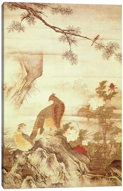 Pheasants and peonies Canvas Art Print