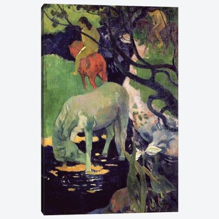 The White Horse, 1898  Canvas Print #BMN10927} by Paul Gauguin Art Print