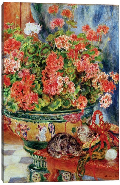 Geraniums and Cats, 1881  Canvas Art Print