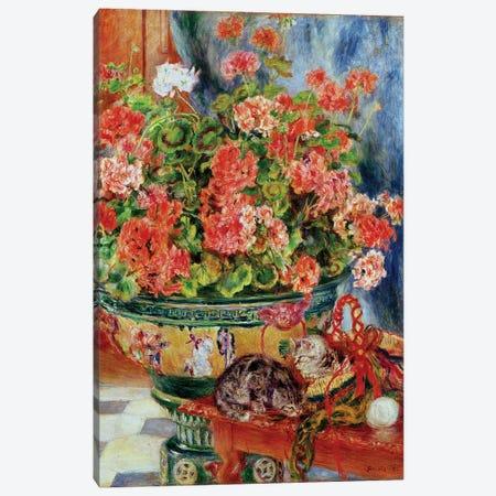 Geraniums and Cats, 1881  Canvas Print #BMN10945} by Pierre-Auguste Renoir Art Print