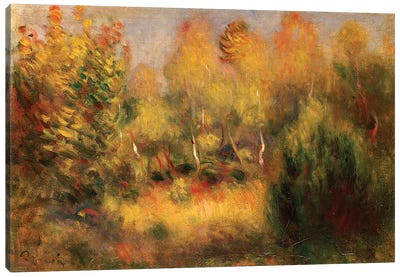 The Glade  Canvas Art Print