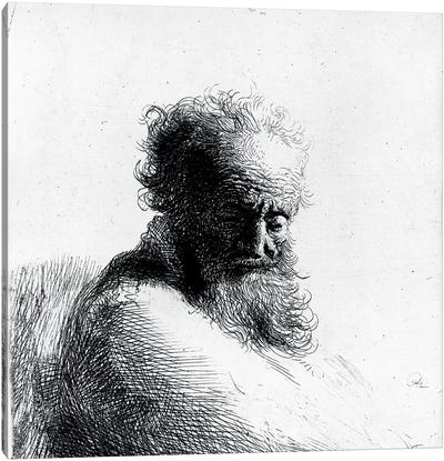 Head of an old man, 1631  Canvas Art Print