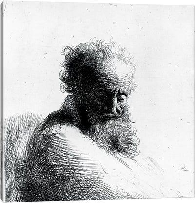 Head of an old man, 1631  Canvas Art Print