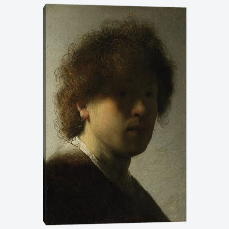 Self Portrait as a Young Man, c.1628  Canvas Print #BMN10986} by Rembrandt van Rijn Art Print