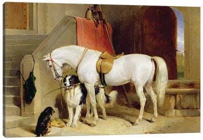 Prince George's Favourites  Canvas Art Print