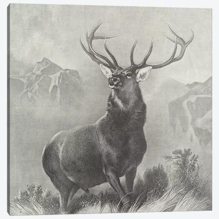 The Monarch of the Glen  Canvas Print #BMN11003} by Sir Edwin Landseer Canvas Art