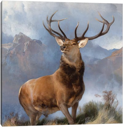 The Monarch of the Glen, c.1851  Canvas Art Print