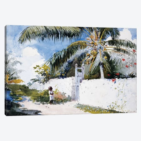 A Garden in Nassau, 1885  Canvas Print #BMN11031} by Winslow Homer Canvas Print