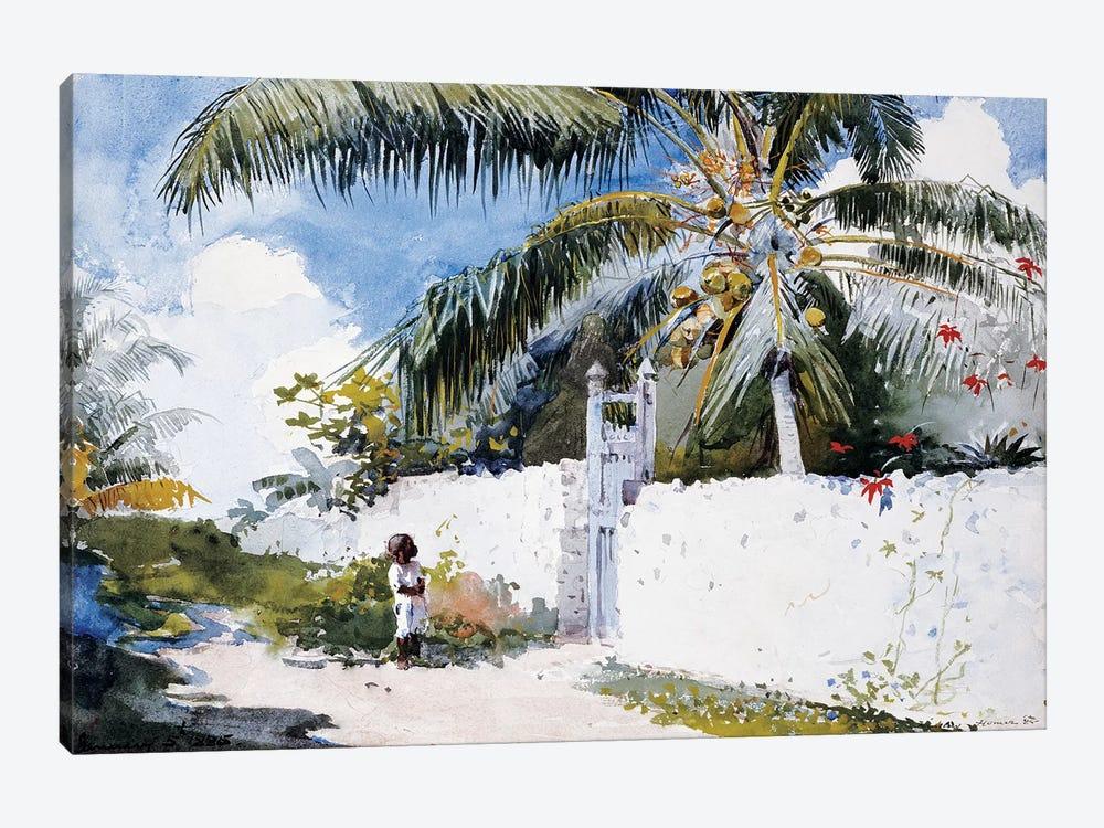 A Garden in Nassau, 1885  by Winslow Homer 1-piece Canvas Art