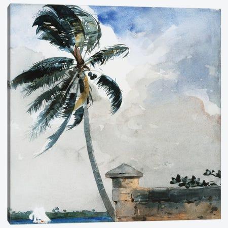 A Tropical Breeze, Nassau, 1889-90  Canvas Print #BMN11033} by Winslow Homer Canvas Print