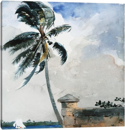 A Tropical Breeze, Nassau, 1889-90  Canvas Art Print