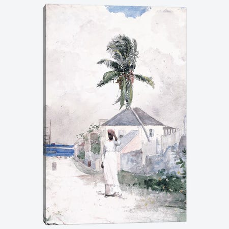 Along the Road, the Bahamas, 1885  Canvas Print #BMN11034} by Winslow Homer Canvas Art