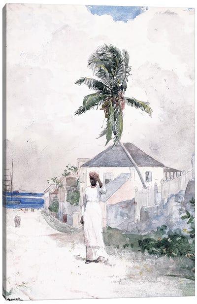 Along the Road, the Bahamas, 1885  Canvas Art Print