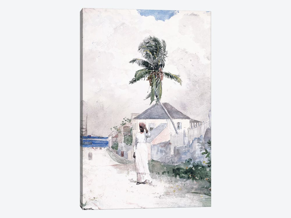Along the Road, the Bahamas, 1885  by Winslow Homer 1-piece Canvas Art Print