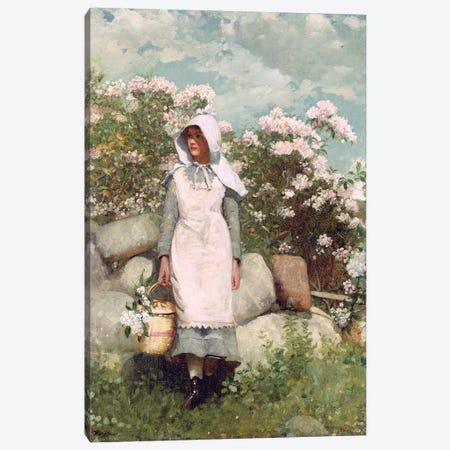 Girl and Laurel, 1879  Canvas Print #BMN11044} by Winslow Homer Canvas Print