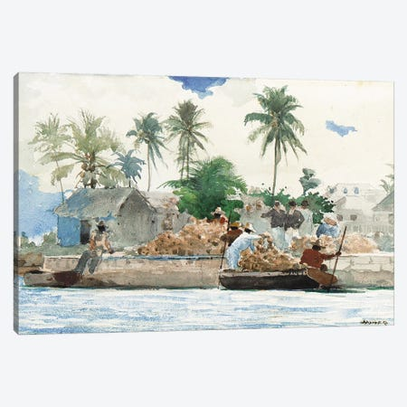 Sponge Fisherman, Bahamas  Canvas Print #BMN11058} by Winslow Homer Art Print
