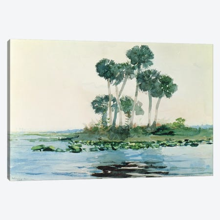 St. John's River, Florida, 1890  Canvas Print #BMN11059} by Winslow Homer Canvas Art Print
