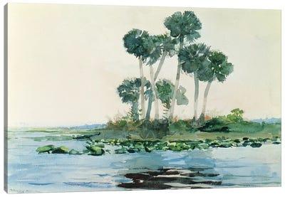 St. John's River, Florida, 1890  Canvas Art Print