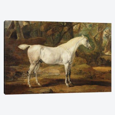 A Grey Arabian Stallion, The Property Of Sir Watkin Williams-Wynn, C.1815-20 Canvas Print #BMN11098} by James Ward Art Print
