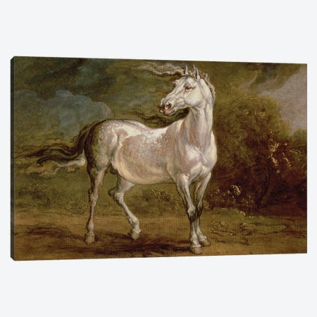 A Grey Charger In A Landscape Canvas Print #BMN11099} by James Ward Canvas Print
