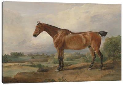 A Hunter In A Landscape, 1810 Canvas Art Print