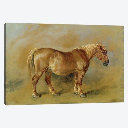 A Suffolk Punch Canvas Print #BMN11103} by James Ward Art Print