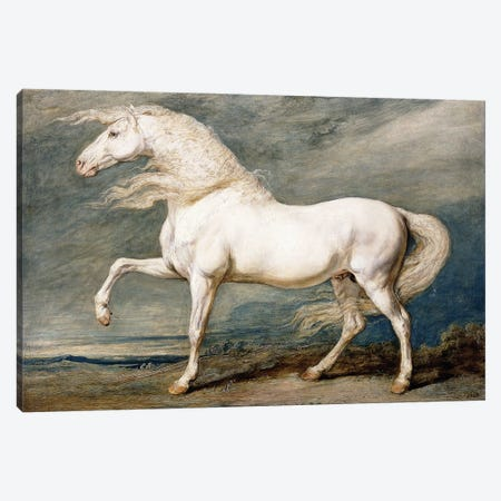Adonis, King George III's Favourite Charger, Canvas Print #BMN11105} by James Ward Canvas Artwork