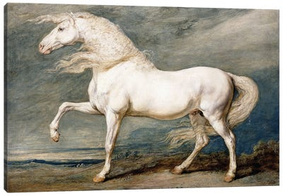 Adonis, King George III's Favourite Charger, Canvas Art Print