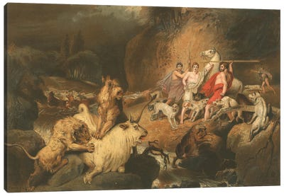 Buffalo Hunters Surprised By Lions Canvas Art Print