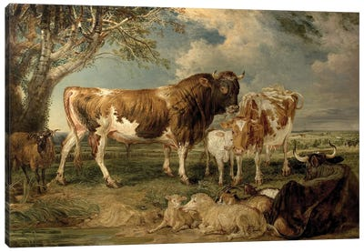 Bull, Cow And Calf In A Landscape, 1837 Canvas Art Print
