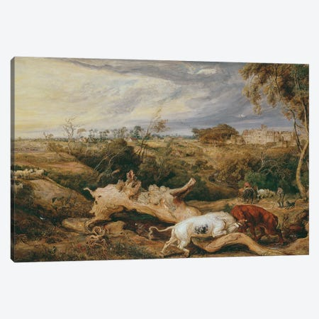 Bulls Fighting; St. Donat's Castle In The Distance, C.1803 Canvas Print #BMN11112} by James Ward Canvas Wall Art