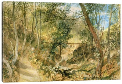 PD.50-1958 The Woodwalk, Farnley Hall, c.1818  Canvas Print #BMN1111