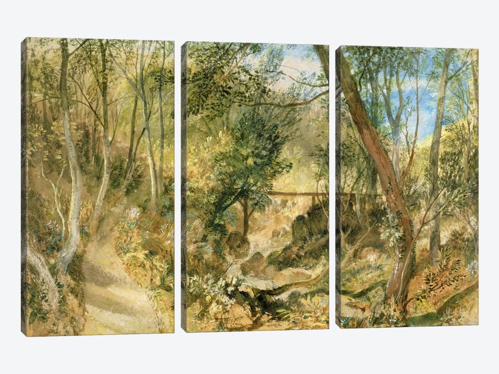 PD.50-1958 The Woodwalk, Farnley Hall, c.1818 by J.M.W. Turner 3-piece Canvas Art