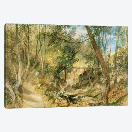 PD.50-1958 The Woodwalk, Farnley Hall, c.1818  Canvas Print #BMN1111} by J.M.W. Turner Canvas Artwork