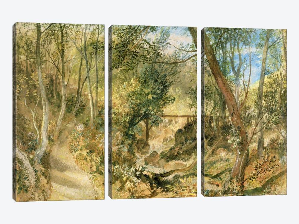 PD.50-1958 The Woodwalk, Farnley Hall, c.1818  by J.M.W. Turner 3-piece Canvas Art