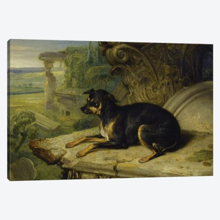 Fanny', A Favourite Dog, 1822 Canvas Print #BMN11122} by James Ward Canvas Print