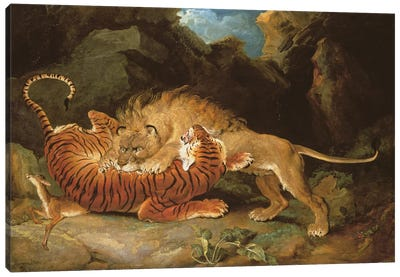 Fight Between A Lion And A Tiger, 1797 Canvas Art Print