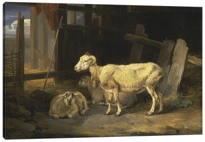 Heath Ewe And Lambs, 1810 Canvas Art Print
