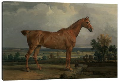 Hunter In A Landscape, 1810 Canvas Art Print