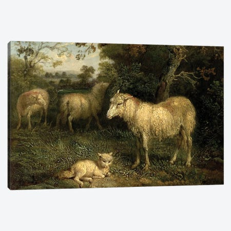 Landscape With Sheep Canvas Print #BMN11134} by James Ward Canvas Print