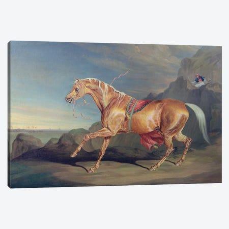 Mr Alfred Bonar's Arabian, Dare Devil Canvas Print #BMN11136} by James Ward Canvas Art Print