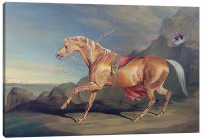 Mr Alfred Bonar's Arabian, Dare Devil Canvas Art Print