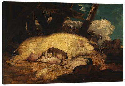 Pigs, Not Before 1793 Canvas Art Print