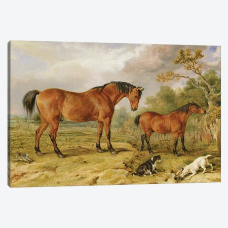 Portrait Of Reformer, Blucher, Tory And Crib, The Property Of Rowland Alston, Esq., 1835 Canvas Print #BMN11139} by James Ward Canvas Art